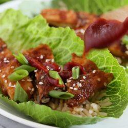 Best Ever Korean Grilled Chicken Breast Lettuce Wraps