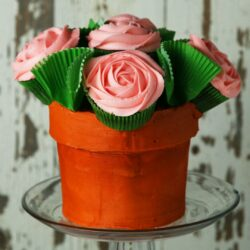 Flower Pot 'box' Cake