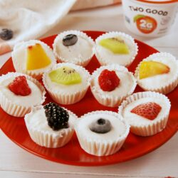 Frozen Yogurt Fruit Bites