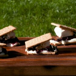 Blueberry Cheesecake S'mores