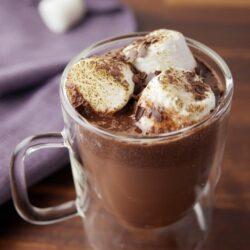 Crock-Pot Red Wine Hot Cocoa