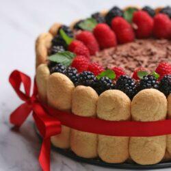 Chocolate Berry Charlotte